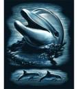 Комплект за гравиране – Делфин 2