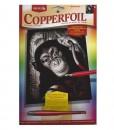 Комплект за гравиране – Шимпанзе