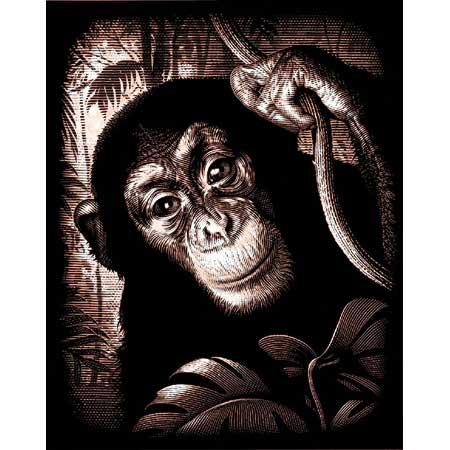Комплект за гравиране – Шимпанзе 2