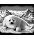 Комплект за гравиране - Тюлен