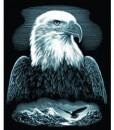 Комплект за гравиране – орел 2