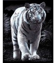 Комплект за гравиране - тигър 2